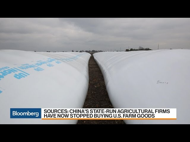 China Said to Ask State Buyers to Halt U.S. Agriculture Imports
